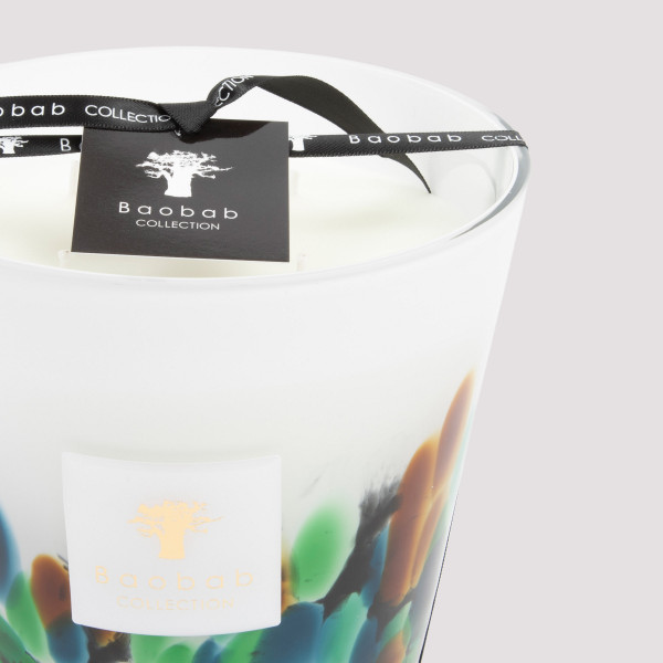 Baobab Collection Rainforest Amazonia Candle Max16