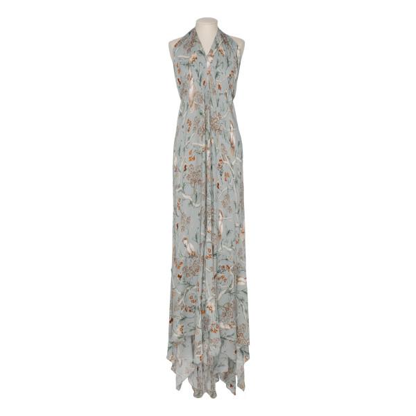Vanuato georgette maxi dress