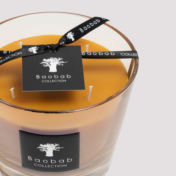 Baobab Collection Zandibar Spices Candle Max10